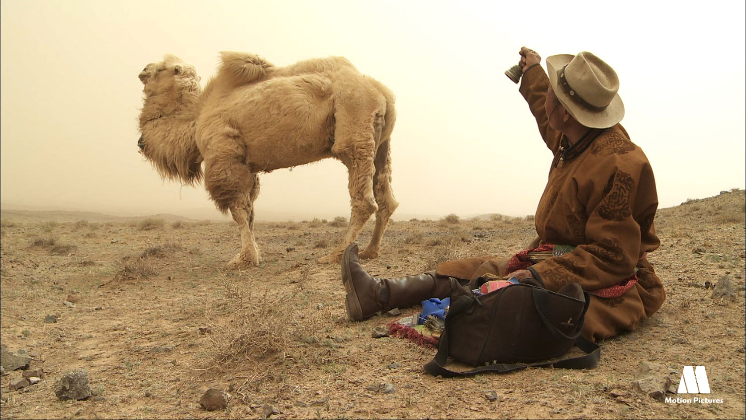 camello y hombre sentado en el suelo, documentary changantime, the white camel, documetal changantime, el camello blanco