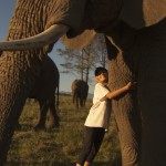 chica elefante, documentary meet me a wild friend, documental mi amigo salvaje